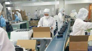Tuyển 20 nam đóng gói công nghiệp tại Osaka Nhật Bản